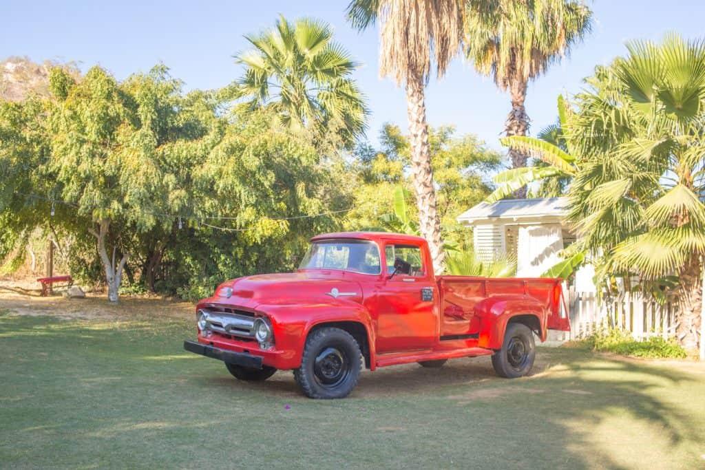 Flora-Farms-Cabo-Mexico