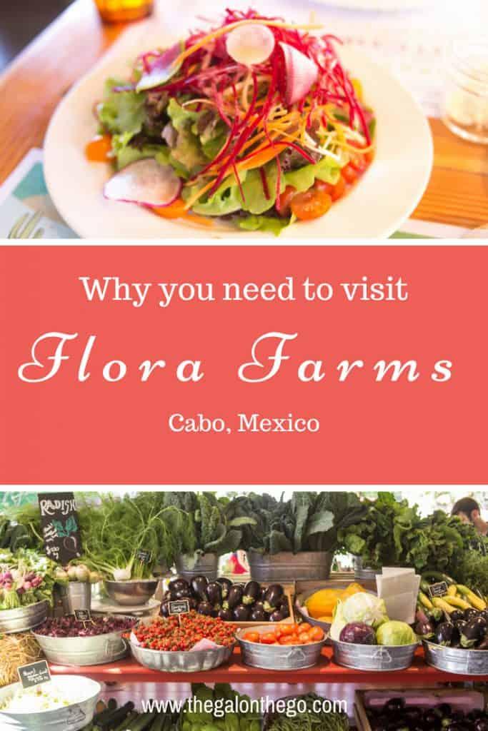Flora Farms Cabo Mexico