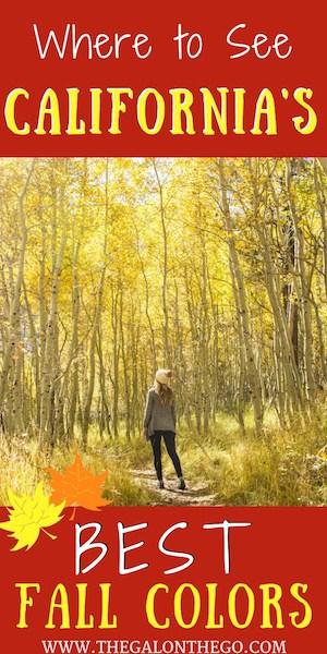 where to see california fall foliage